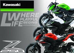 Kawasaki Z250 สีใหม่