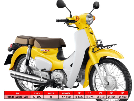 All New Honda Super Cub ราคาผ่อนดาวน์ ตาราง