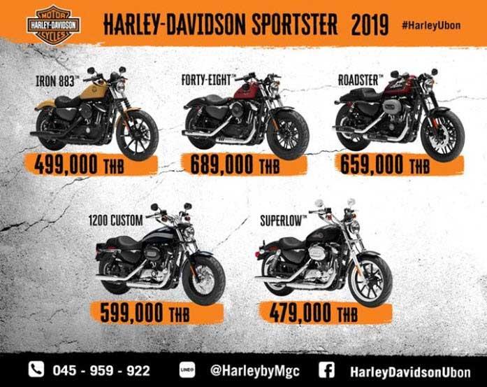Harley Davidson 2019